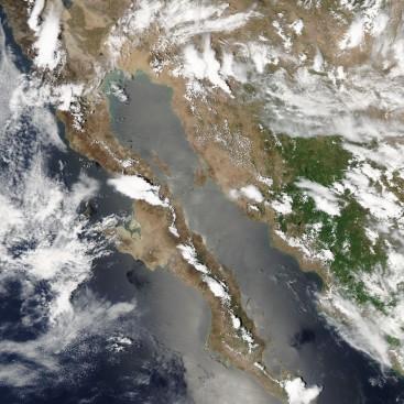 Baja California Sur vista desde el espacio. Agosto 2014. MODIS - NASA